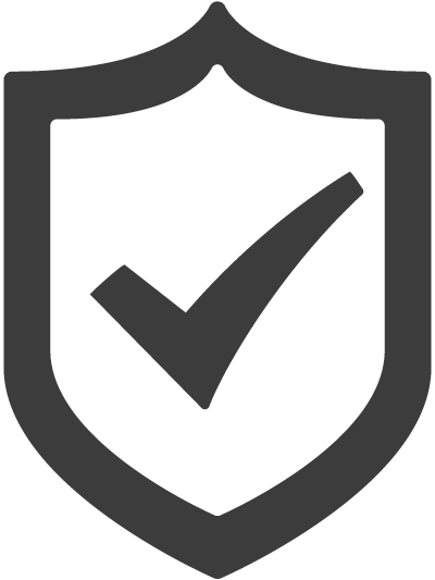 IT security icon